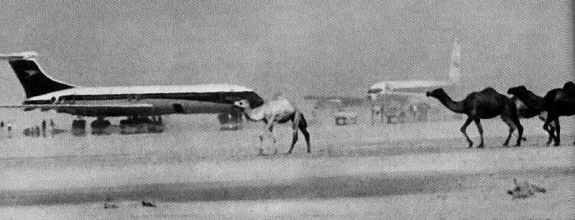 Hijacked planes at Dawson's Airfield, Jordan